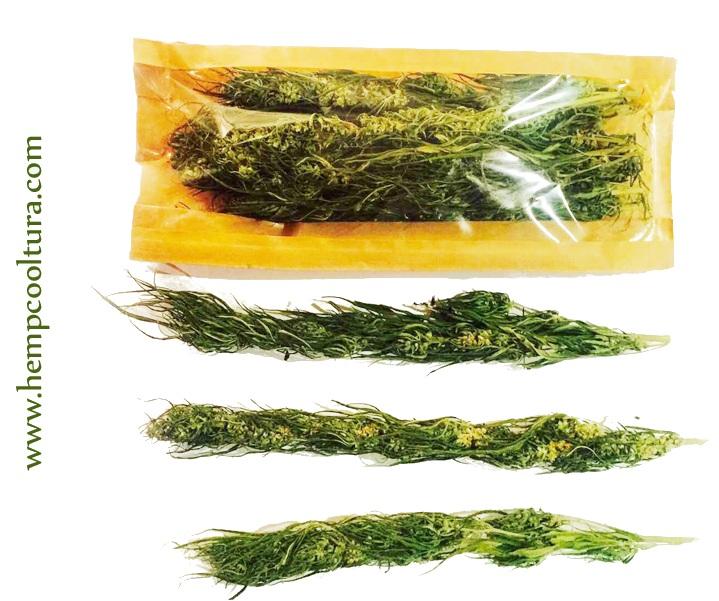 High quality hemp tea buds